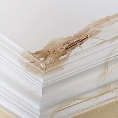 Water damage in a Vancouver mansion caused by a water pipe leak.
